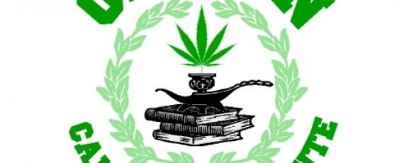 Cannabis Business Workshops