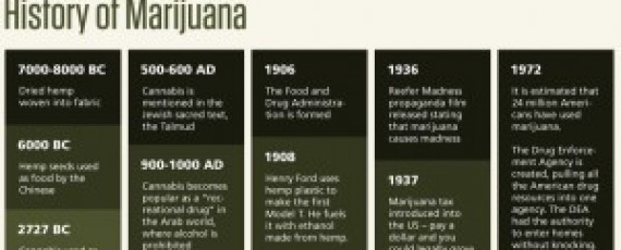 Marijuana business courses
