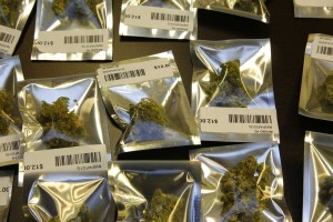 Marijuana biz seminar